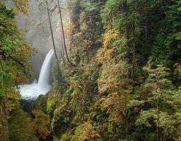 Wasserfall Wald Gischt Schlucht