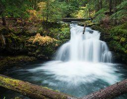 Wasserfall Fels Berg Stein Stamm