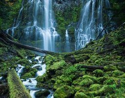 Wasserfall Fels Berg Stein Moos