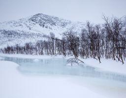Berg Schnee Winter Baum See